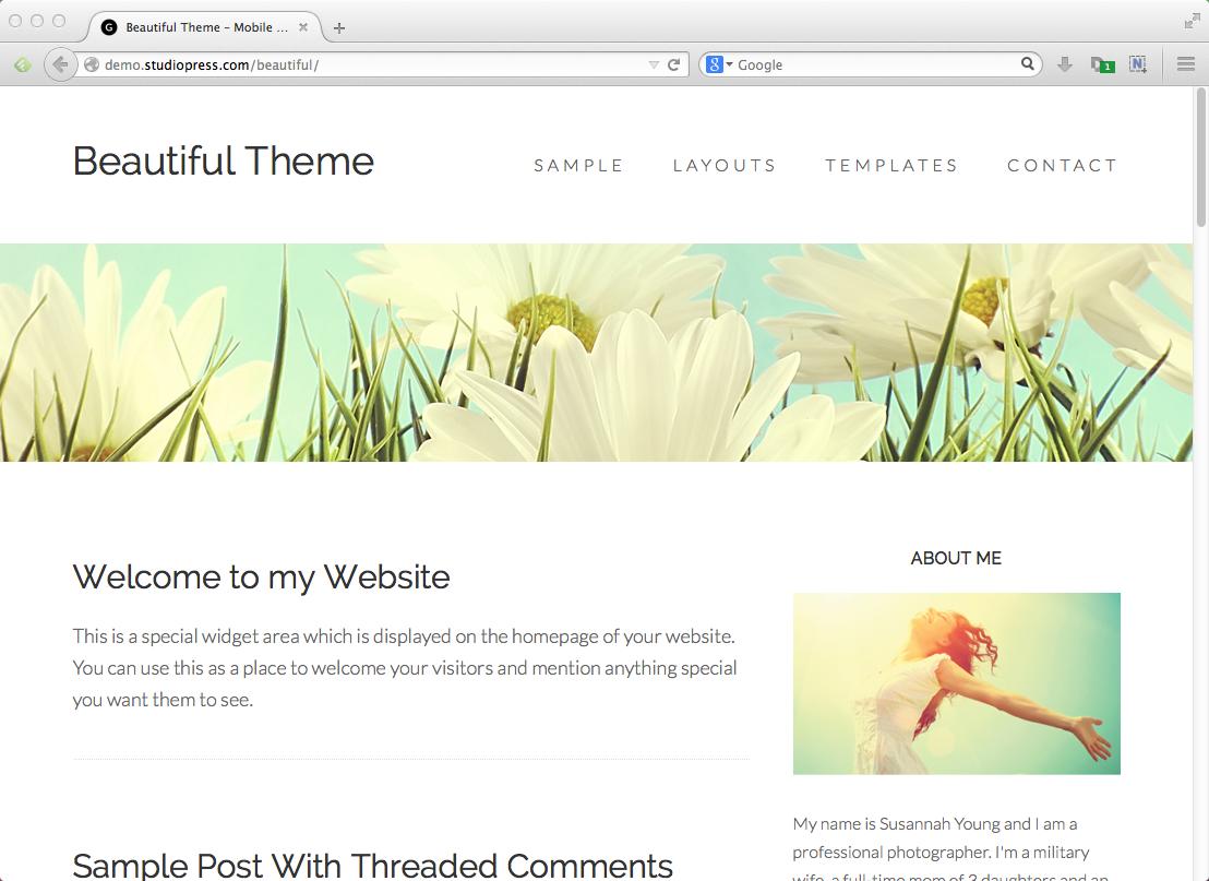 Best blog themes for WordPress: Genesis Beautiful Pro