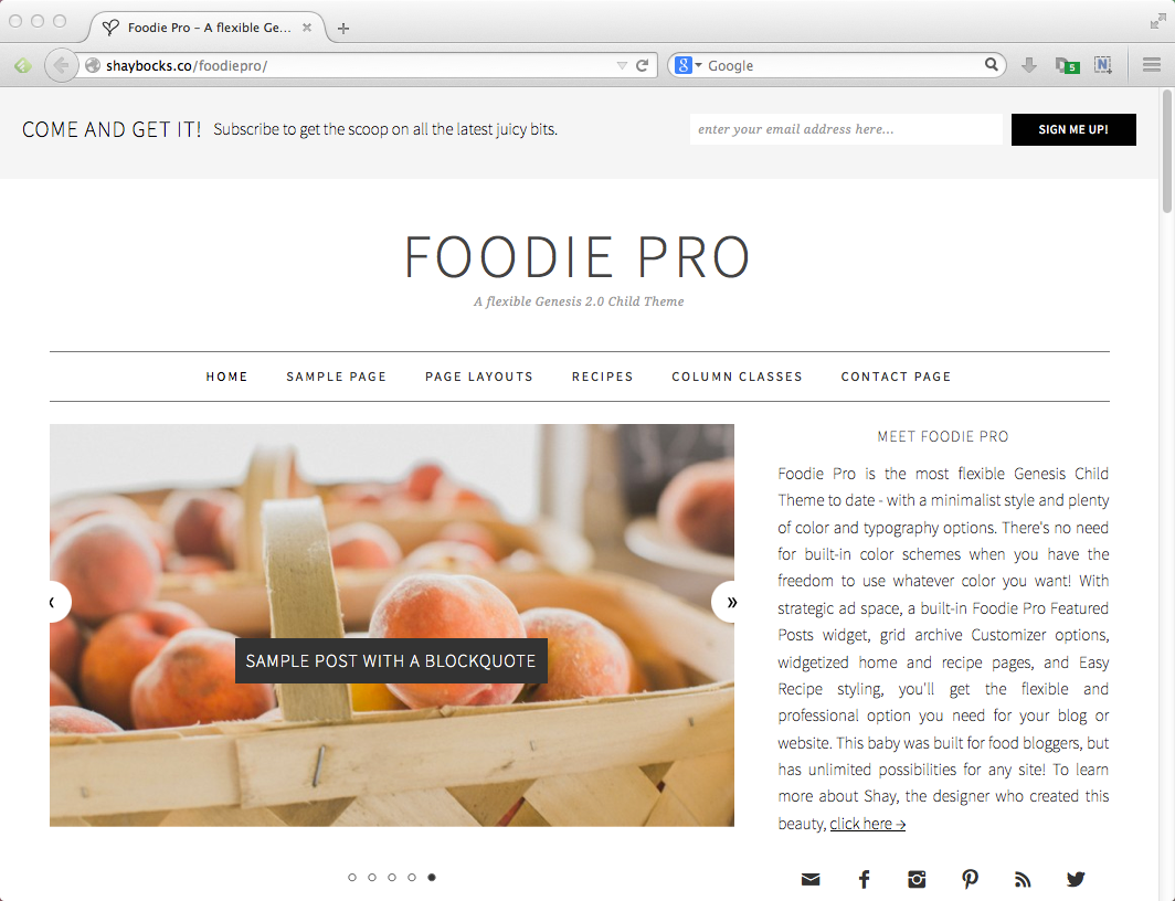 Best blog themes for WordPress: Foodie Pro
