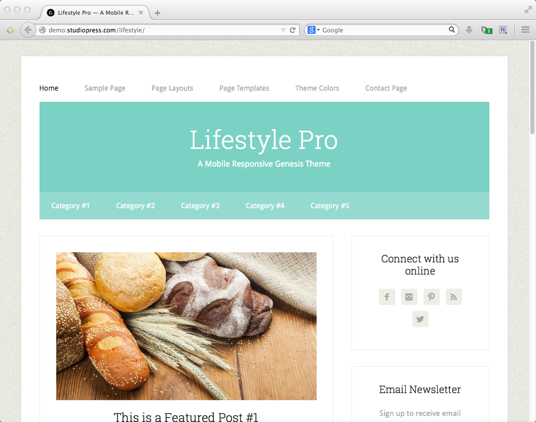 Best blog themes for WordPress: Lifestyle Pro